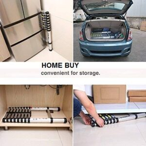 easy to carry and store ladder